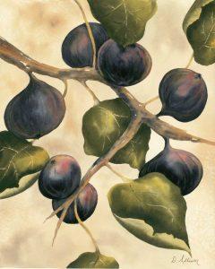 Italian Harvest – Figs