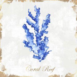 Blue Sea Coral