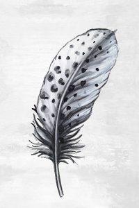 Indigo Feather II