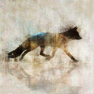 Fox Walk I