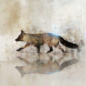 Fox Walk II