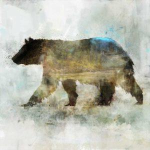Journey Bear II