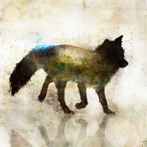 Fox Joy I