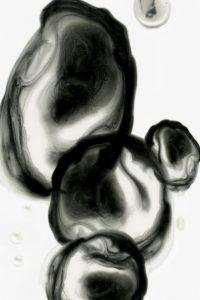 Neutral Blobs I