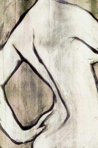 Nude Sepia I