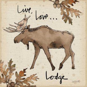 Lodge Life IV