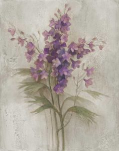 Purple Larkspur Garden on Grey