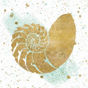 Silver Sea Life Aqua Shell