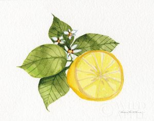 Citrus Garden IX
