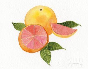 Citrus Garden X