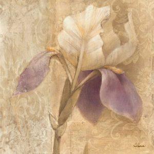 Brocade Iris – Wag