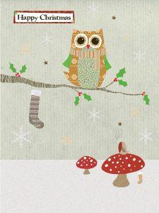 Woodland Owl and Robin