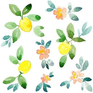 Lemons and Blooms