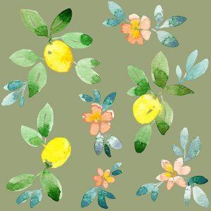 Lemons – Olive