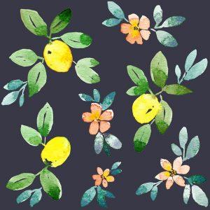 Lemons – Navy