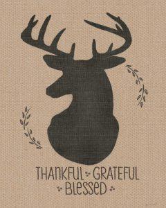 Deer – Grateful