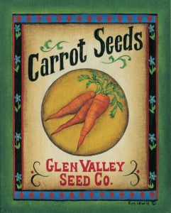 Carrot Seeds