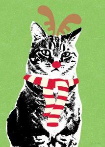 Rudolph Cat
