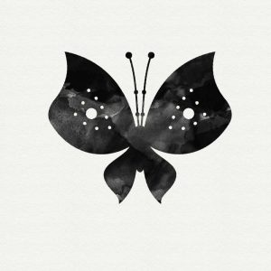 Black and White Butterfly II