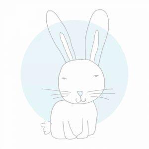 White Bunny Blue