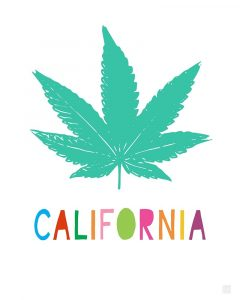 California Cannabis