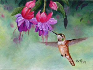 Hummer and Pink Fuchsias