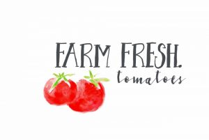 Farm Fresh Tomatoes II