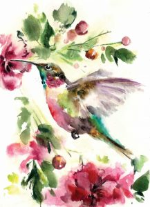 Hummingbird Joy