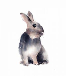 Portrait of a Rabbit III