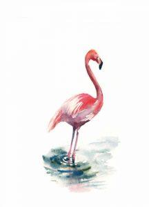 Pink Flamingo II