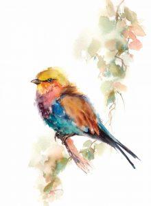 Pretty Bird III