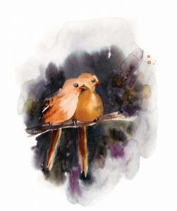 Doe Eyed Birds