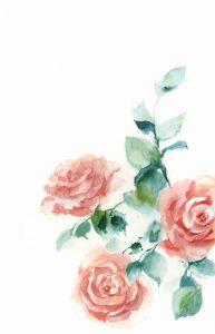 Peachy Petals