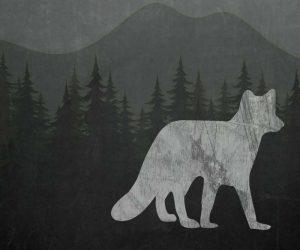 Chalkboard Fox