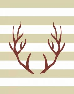 Maroon Antlers
