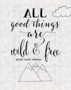 All Good Things Quote II