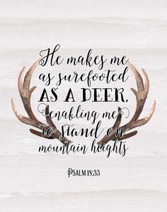 Psalm 18-33