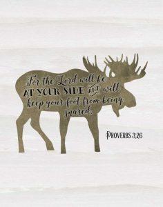 Proverbs 3-26