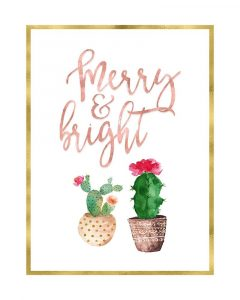 Merry and Bright Succulent