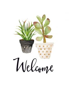 Welcome Succulents