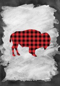 Plaid Buffalo