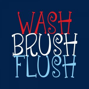 Wash Brush Flush