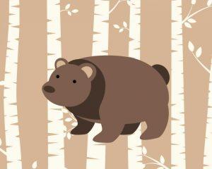 Bear Birch I