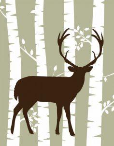 Deer I Woods