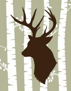 Deer 2 Woods