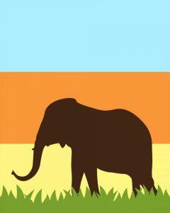 Safari III