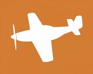 Airplane I
