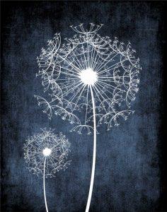 Dandelion on Blue II