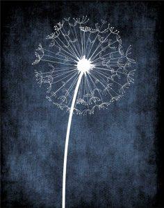 Dandelion on Blue III