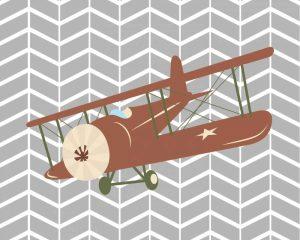 Plane IV
